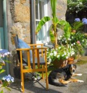 Orchard Cottage, Newlyn, Cornwall